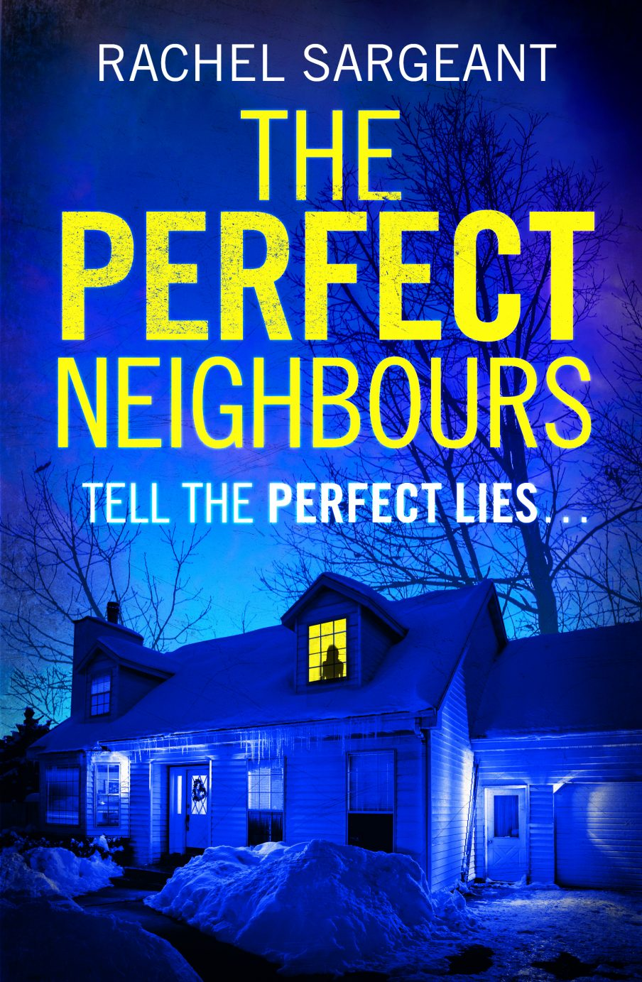 Perfect Neighbours by Rachel Sargeant